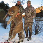Colorado Trophy Mountain Lion Photo-1