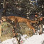 Colorado Trophy Mountain Lion Photo-5