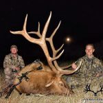 Colorado Elk Trophy Photo-1