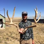 Colorado Trophy Mule Deer Photo-2