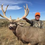 Colorado Trophy Mule Deer Photo-6