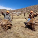 Colorado Elk Trophy Photo-3