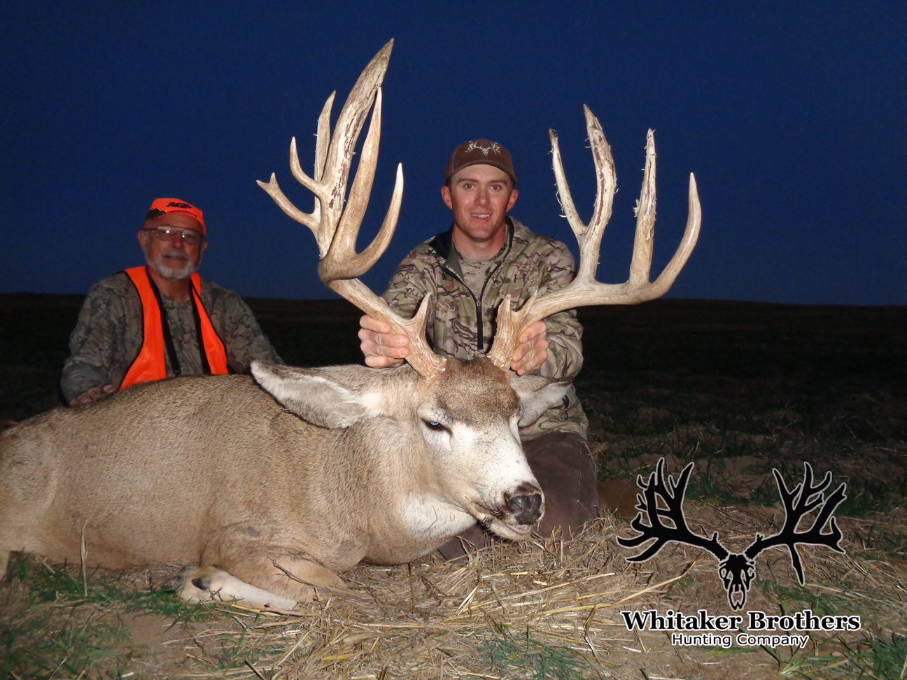 Mule Deer - Whitaker Brothers Hunting Company