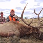 Colorado Elk Trophy Photo-4
