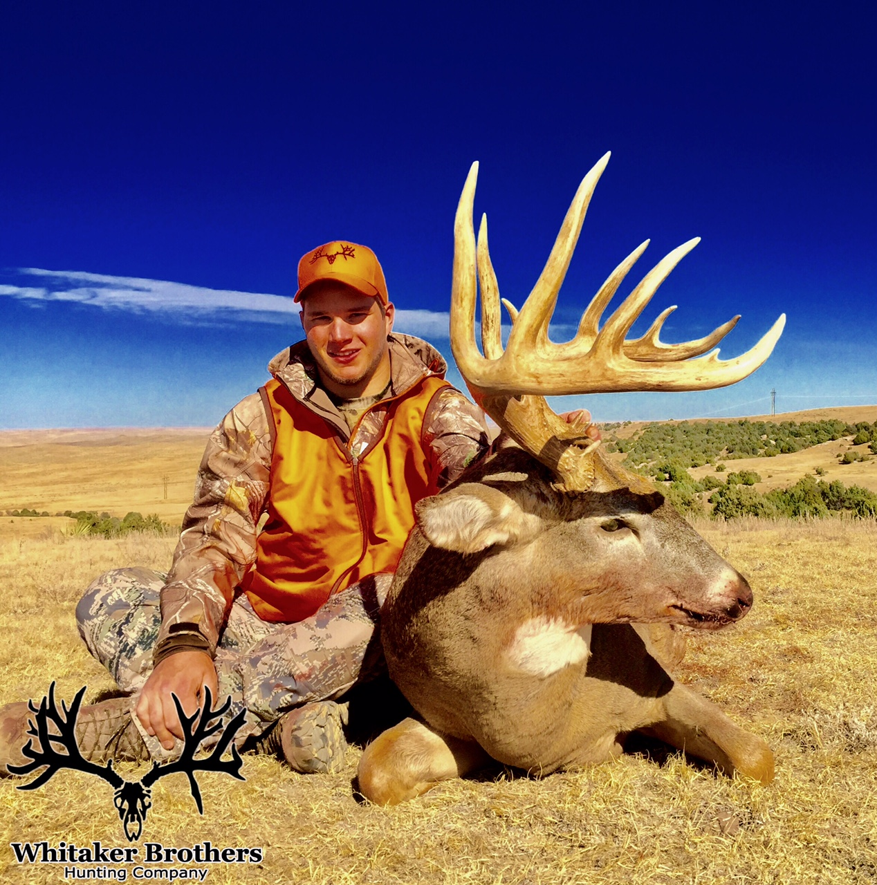 Colorado Hunting License: Whitaker Brothers Hunting Company