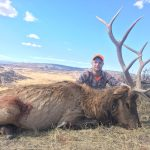 Colorado Elk Trophy Photo-5
