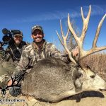 Colorado Trophy Mule Deer Photo-15
