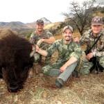 Mexico Buffalo