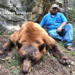 Whitaker Brothers Hunting Company: Black Bear Hunt